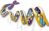 Your DNA helix will reveal your Scottish genetic genealogy through accurate DNA testing